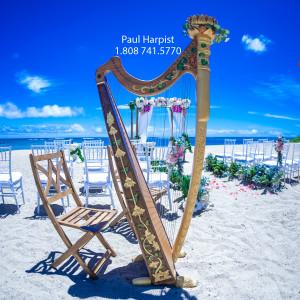 Paul Harpist - Harpist in Honolulu, Hawaii