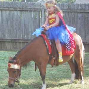 Perfectly Pettable Party Animals & Pony RIdes - Pony Party in Hattiesburg, Mississippi