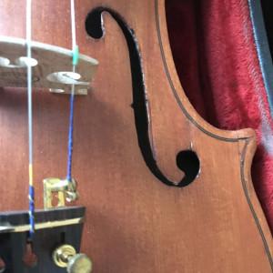 Vasileios - Violinist - Violinist in Portsmouth, Rhode Island