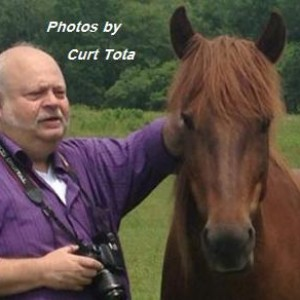 Photos by Curt Tota - Photographer in Westbrook, Connecticut