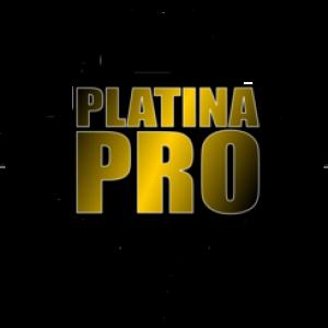 Platina - Pro inc - Sound Technician in Miami, Florida