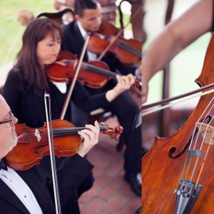 Plays Well With Others - Classical Ensemble / Cellist in Hemet, California
