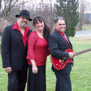 Poetic Justice Rocks - Dance Band in Halifax, Pennsylvania