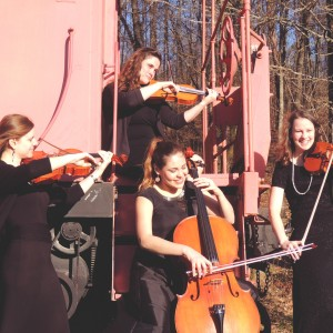 Polyphonia Strings