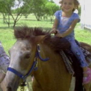 Ponies2you - Pony Party / Children's Party Entertainment in Iowa Park, Texas