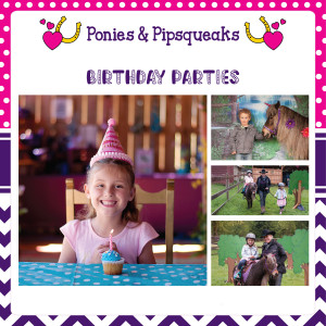 Ponies and Pipsqueaks - Pony Party / Children's Party Entertainment in Victoria, British Columbia