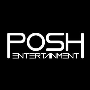 Posh Entertainment - Wedding DJ in Waukesha, Wisconsin