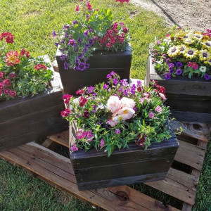 Pots and Posies - Wedding Florist in Hanford, California