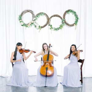 Premiere Wedding & Event Music Las Vegas - String Quartet / Jazz Guitarist in Las Vegas, Nevada