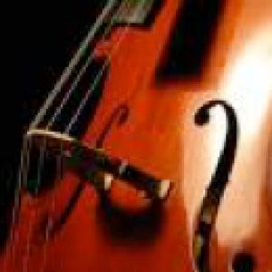 Princeton String Quartet - String Quartet in Princeton, New Jersey