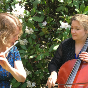 Puget Sounds Quintet and Trio - Classical Ensemble in Seattle, Washington