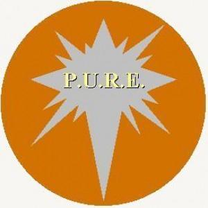 P.u.r.e. - Classic Rock Band in Herndon, Virginia