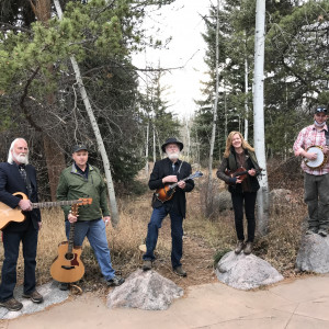 Quickdraw Homegrown Music - Bluegrass Band in Denver, Colorado