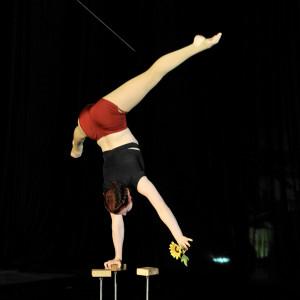 Rachel Hipszer: Circus Entertainment - Circus Entertainment in Brattleboro, Vermont