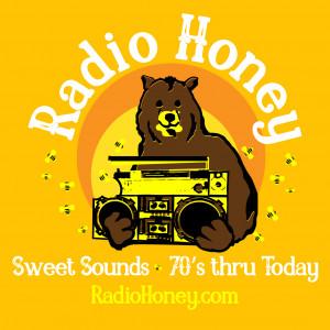 Radio Honey - Cover Band / Acoustic Band in Norton, Massachusetts