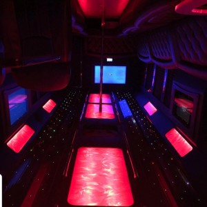 Ray's Chauffeur - Limo Service Company / Chauffeur in Tampa, Florida