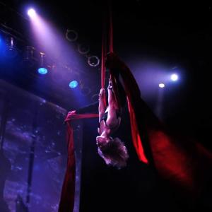 Rebecca Ann Henry - Aerialist / Circus Entertainment in Seattle, Washington