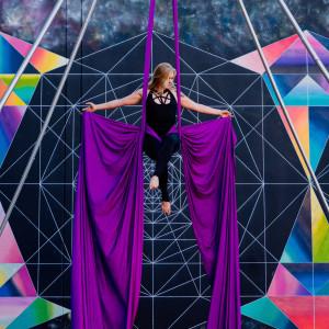 Rebel Aerial  - Aerialist / Circus Entertainment in Sacramento, California