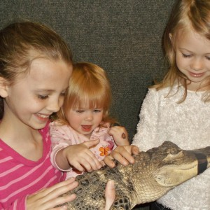 Reptile & Amphibian Discovery Zoo - Reptile Show / Children's Party Entertainment in Owatonna, Minnesota