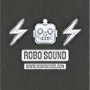 Robo Sound - Sound Technician in Easthampton, Massachusetts