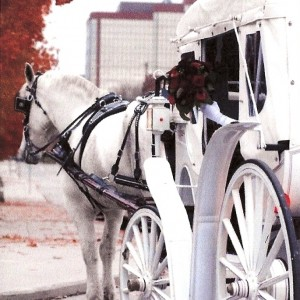Rosewood Carriage Rides - Horse Drawn Carriage in Fort Wayne, Indiana