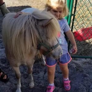 Paw Peeps - Pony Party in Bradenton, Florida