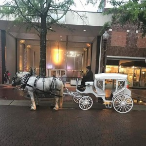 S and S Carriage Rides