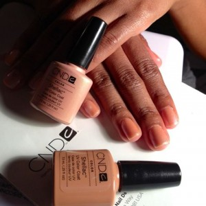Salon Nails and Mobile Beauty Service - Mobile Spa in Raleigh, North Carolina