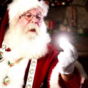Papa Santa - Santa Claus in San Diego, California