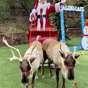 Santa August - Santa Claus in Long Beach, California