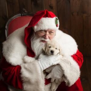 SantaLarry - Santa Claus in Franklin, Massachusetts