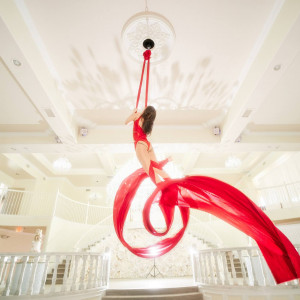 Sanya Ismail - Aerialist - Aerialist / Variety Entertainer in Dallas, Texas