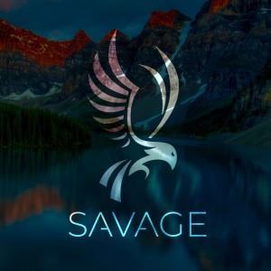 SAVAGE Media Group - Videographer in Chicago, Illinois