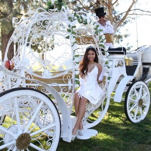 Savannah Rose Carriages - Horse Drawn Carriage in Rancho Cucamonga, California