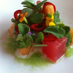 Savor Chef Services - Caterer in Austin, Texas