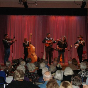 Scattered Grass - Bluegrass Band in Tucson, Arizona