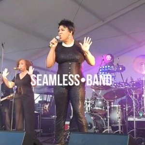 SeamLess - Cover Band / Party Band in Suffolk, Virginia
