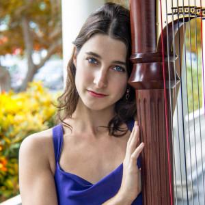 Serendipitous Strings - Harpist / Violinist in Houston, Texas