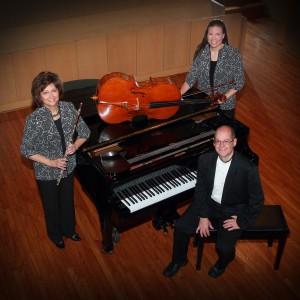 Silver & Strings Trio - String Trio in Canton, Ohio