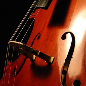 Simply Strings - Classical Duo in Welcome, Minnesota