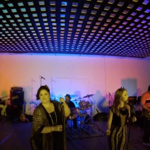 Sofa King - Funk Band / Dance Band in Chico, California