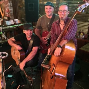 Soul Punch Folk Band - Acoustic Band in Ballwin, Missouri