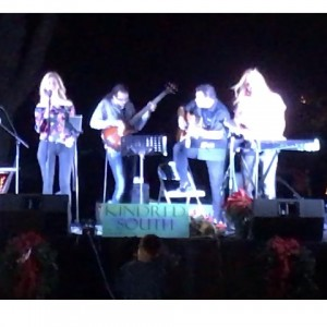 Southern Acoustic Harmony - Holiday Entertainment in Dallas, Texas