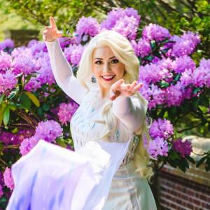 Spark A Dream Princess Parties - Princess Party / Children's Party Entertainment in Danvers, Massachusetts