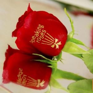 Speaking Roses-Lake Charles
