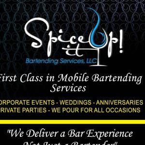 Spice It Up! Bartending Services - Bartender / Wedding DJ in Braselton, Georgia
