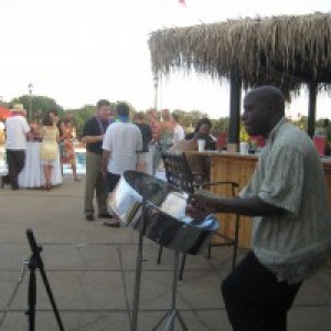 Steel Drum Flavor - Steel Drum Player / Latin Jazz Band in St Louis, Missouri