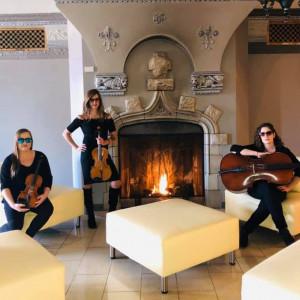 Stellare Strings - String Trio / String Quartet in Pittsburgh, Pennsylvania