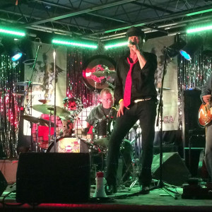 Stone Velvet Roses - Tribute Band in Cambridge, Ontario
