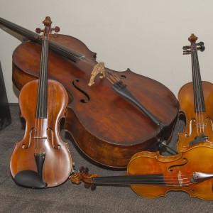String Quartet Con Brio - String Quartet / Classical Duo in Fort Collins, Colorado